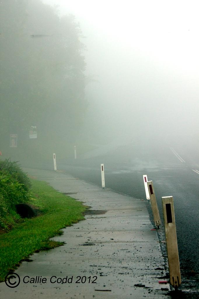 Mist in Maleny