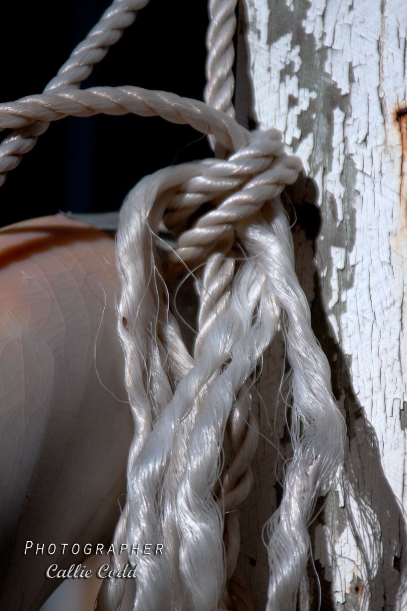 rope & post