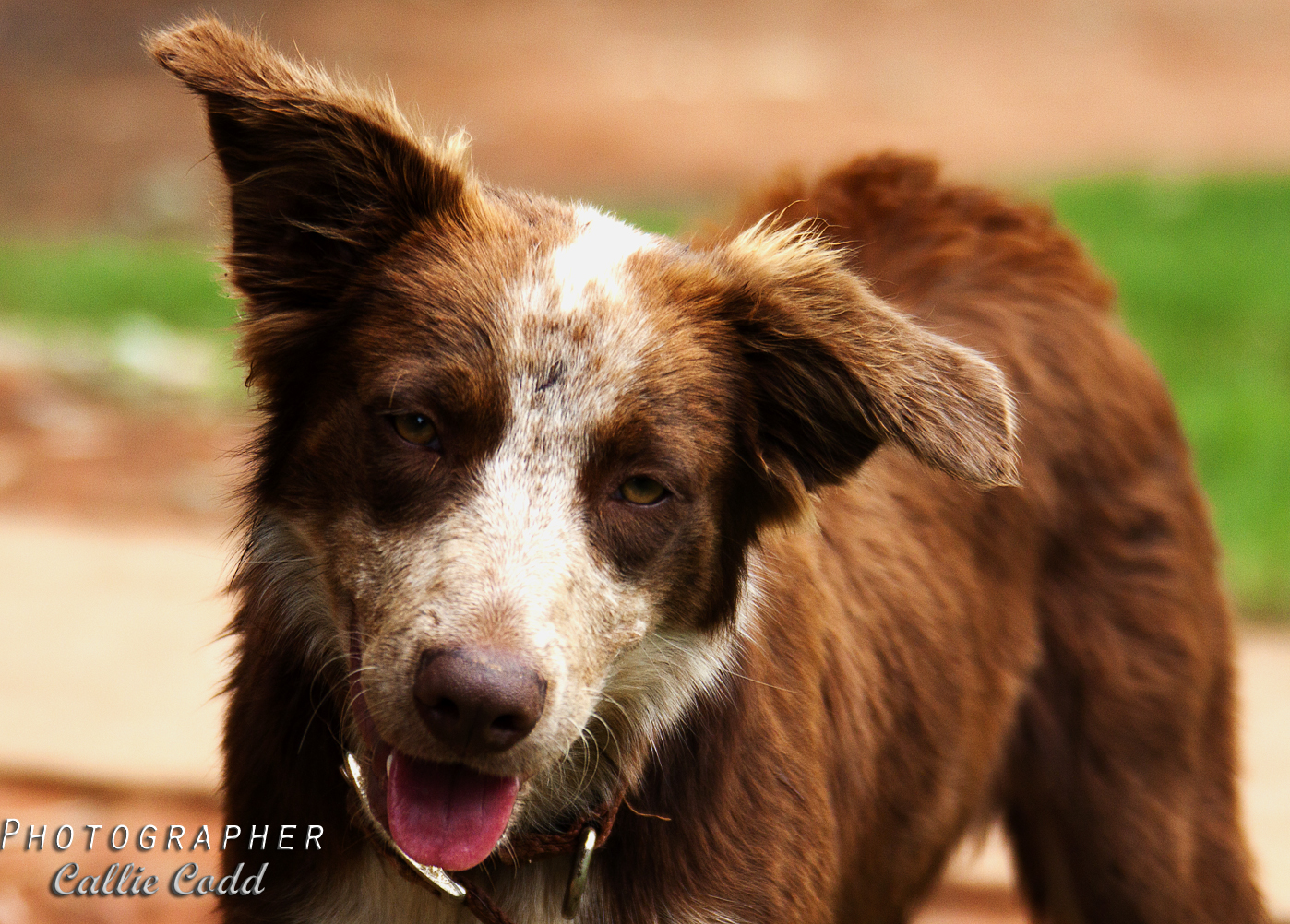 Silent Circle Love Is Just A Word
